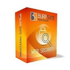 Burp Suite Pro 2020.11.1 Crack